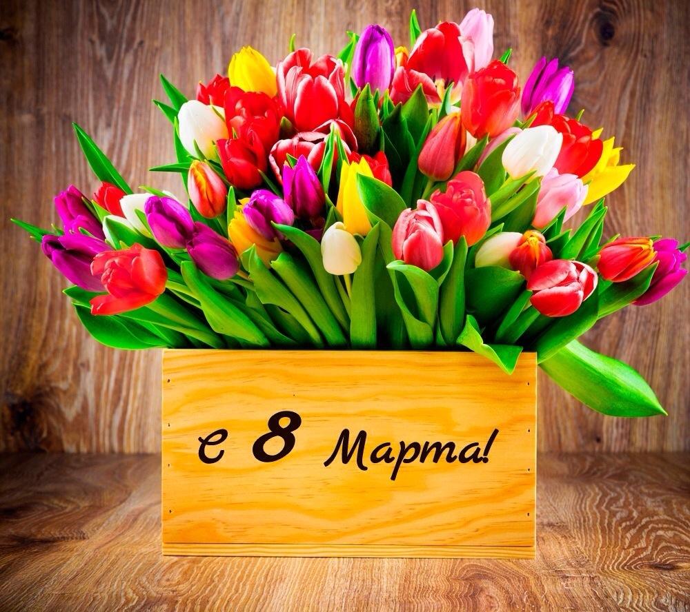 Открытки с 8 марта с тюльпанами и мимозами